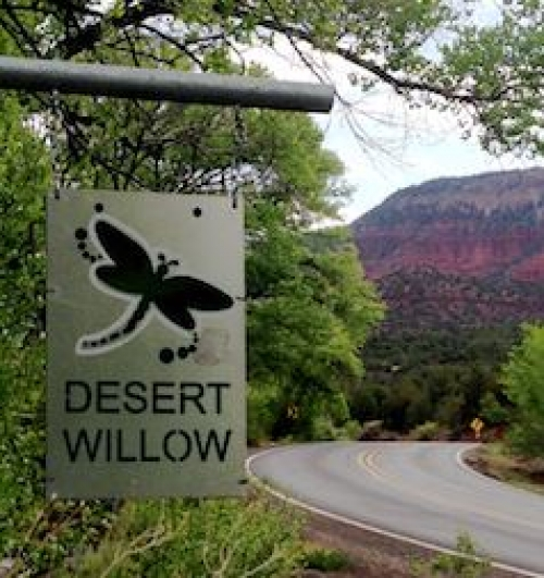 The Dragonfly Cottage at Desert Willow Bed and Breakfast